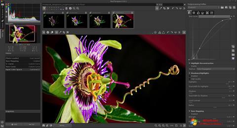 Ekran görüntüsü RawTherapee Windows 7